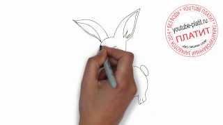 Как нарисовать красивого дружелюбного зайца(Как нарисовать картинку поэтапно карандашом за короткий промежуток времени. Видео рассказывает о том,..., 2014-07-12T05:36:32.000Z)