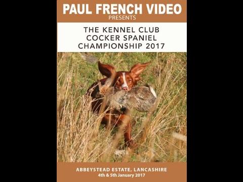 2017 Cocker Spaniel Championship - video clip