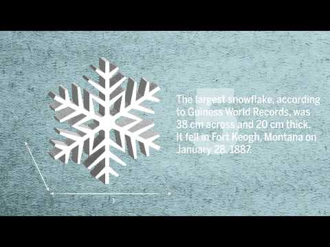 10 Things About Snow   QMI Agency