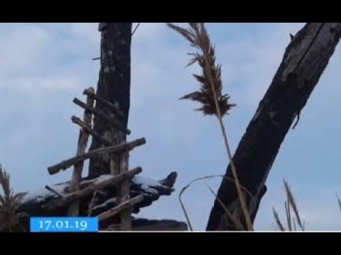 ТРК ВіККА: У заказнику на Черкащині зняли дві «браконьєрські вежі»