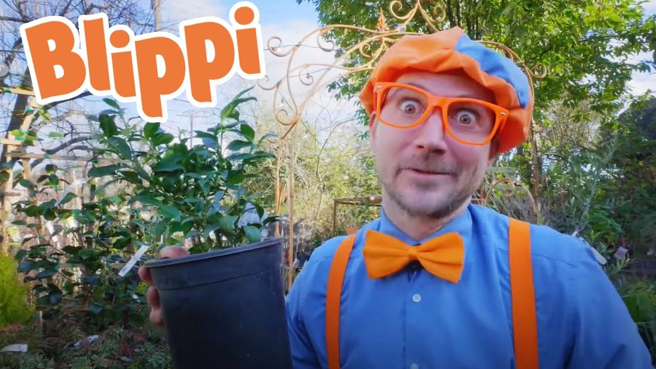 Blippi's Great Green Movie | Blippi Full Movie | Educational Videos For Kids