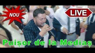 Puisor de la Medias - Sa traiasca fata mea - Live Franta 2019