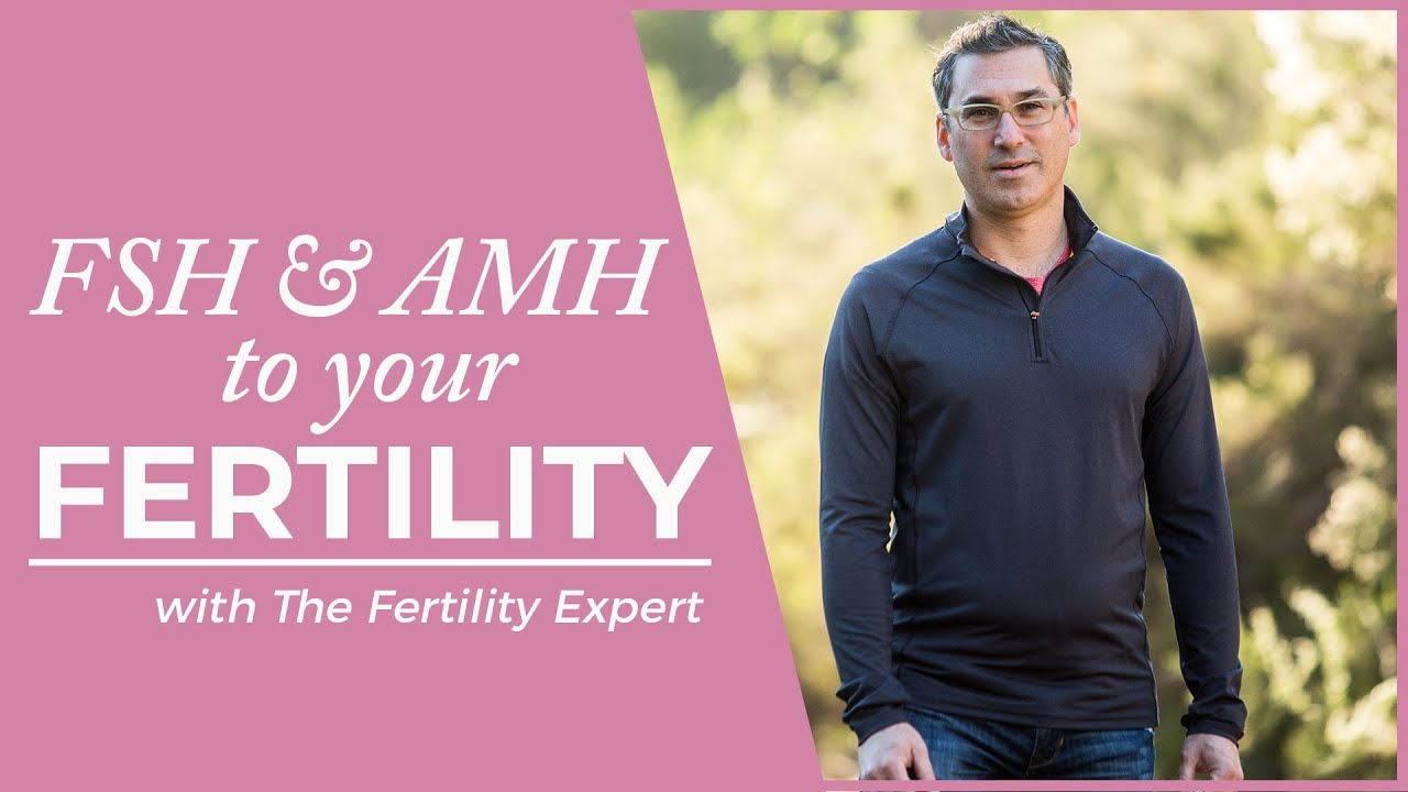 What Does Fsh And Amh Mean Get Pregnant Faster -7575