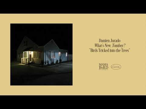 "Damien Jurado - ""Birds Tricked into the Trees"" (Art Track)"