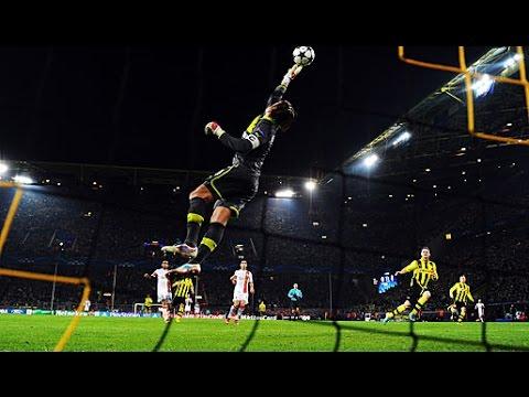 Roman Weidenfeller - Borussia Dortmund
