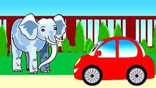 Мультик про животных и машинку. Животные в зоопарке и киндер сюрпризы