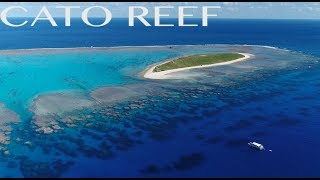 FISHING CATO REEF AUSTRALIA