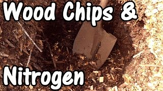 Does Wood Chip Mulch Tie Up Nitrogen & Increase Nitrogen Fertilization Requirements?