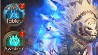 Legacy of Discord - New Update - Pet Awaken - Artifacts!