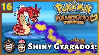 In search of EXP. Share we work our way to the Lake of Rage and encounter a shiny Gyarados!