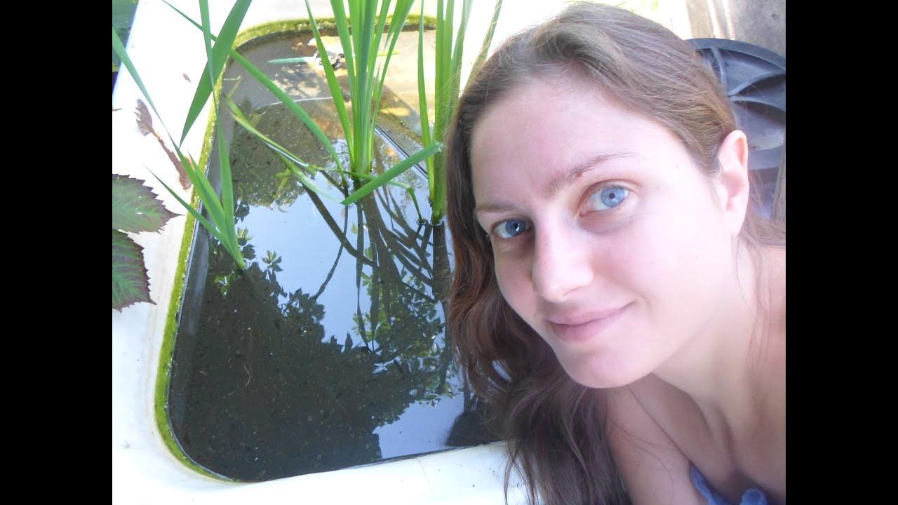 Как сделать воду прозрачной фото 204