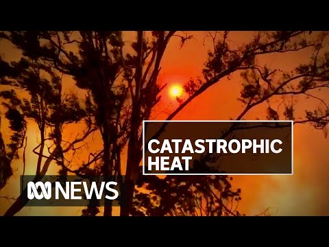 Victoria And SA Continue To Hit Record Temperatures As Heatwave Persists | ABC News