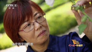 Gambar cover [等着我]儿女同时被拐 至今分离二十年 | CCTV