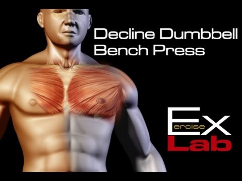 Decline Bench Press Chest Exercises Youtube