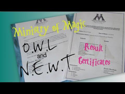 DIY Harry Potter Exam Grade Certificates! I O.W.L and N.E ...