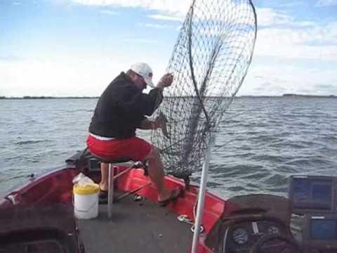 Walleye fishing south dakota youtube for South dakota out of state fishing license