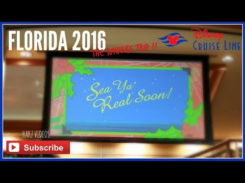 SEA YA REAL SOON FROM THE DISNEY DREAM | MERRYTIME CRUISE