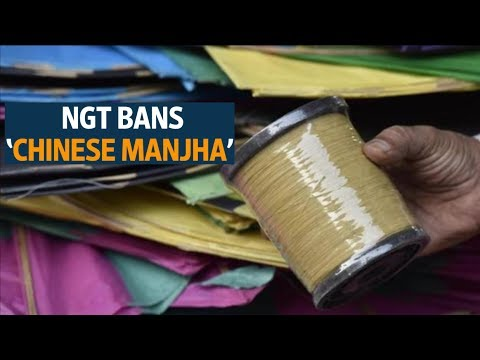 NGT bans 'Chinese manjha' for kite-flying