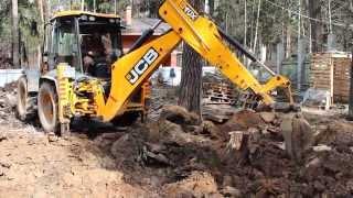 Смотреть видео Вырубка и корчевания деревьев