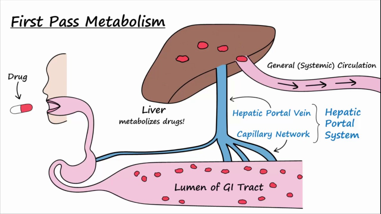 Image result for first pass metabolism
