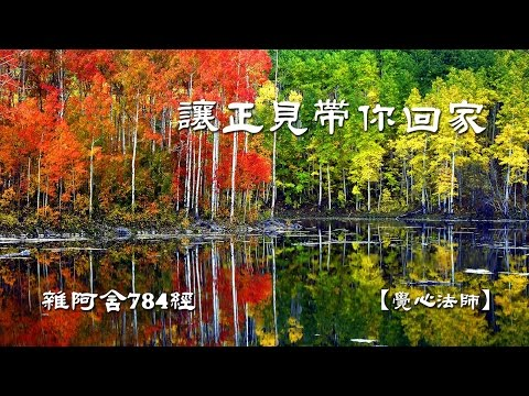 雜阿含784經-(3)讓正見帶你回家【覺心法師】