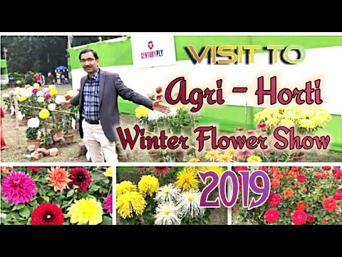 Visit to Agri - Horticultural Society Winter Flower Show - 2019
