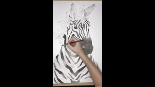 The Making of May, the Zebra.