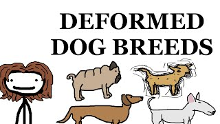 Video Dog Breed Deformities download MP3, 3GP, MP4, WEBM, AVI, FLV Agustus 2018