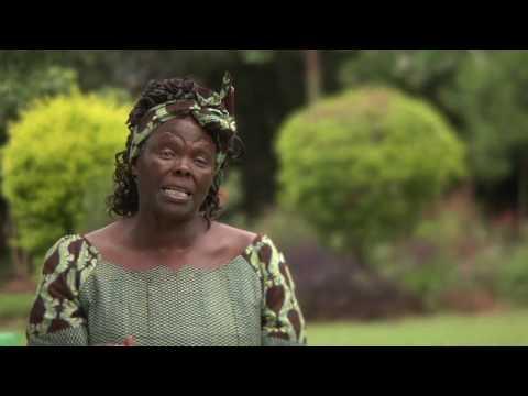 Wangari Maathai & The Green Belt Movement