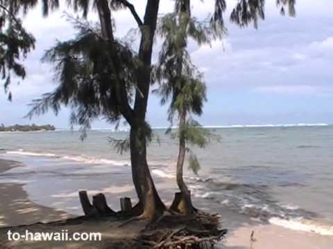 Punaluu Beach Park Oahu