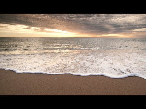 Standing Bold: Cape Cod National Seashore
