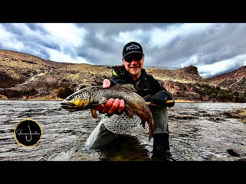 Social Distancing: Fly Fishing For Trout On The Green River, Utah