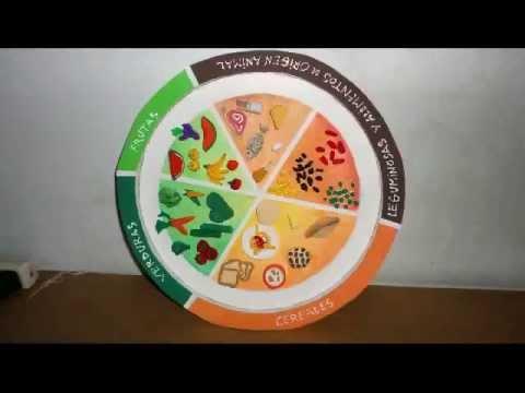 Plato del Bien Comer - YouTube
