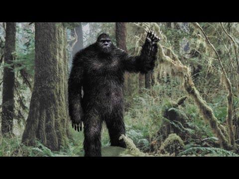 Bigfoot: New Evidence