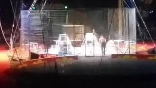 Shrine Circus 2018
