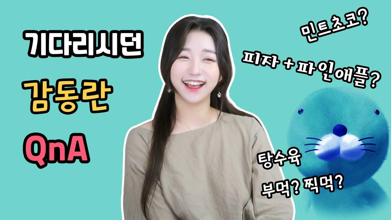 한국인이 좋아하는 스피드의 QnA