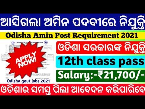 Amin Requirement Odisha 2021|Odisha govt jobs 2021|odisha job update|free job alert 2021|odisha jobs