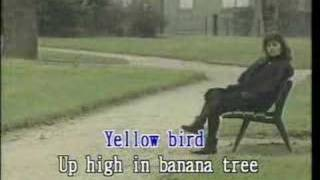 Yellow Bird Karaoke