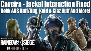 Nokk ADS Bug, Improved Cav/Jackal Interaction & More! - Y4S4 Operator Updates: Rainbow Six Siege