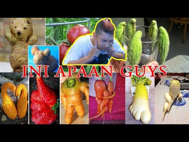 Buah dan Sayuran Berbentuk aneh yang belum pernah Anda lihat