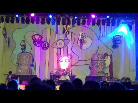 Animal Collective - Alvin Row - live in Royal Oak 2016