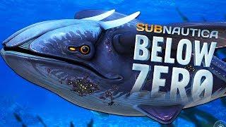 PIERWSZY LEVIATHAN ZNALEZIONY! | SUBNAUTICA BELOW ZERO #3