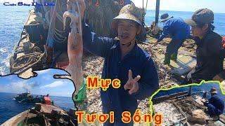 NGƯỜI ĐI BIỂN #12│Kéo Cào Gặp Ghẹ Sống,Mực Sống,Ngon Chảy Nước Vải.pull the rake,met squid,crab.