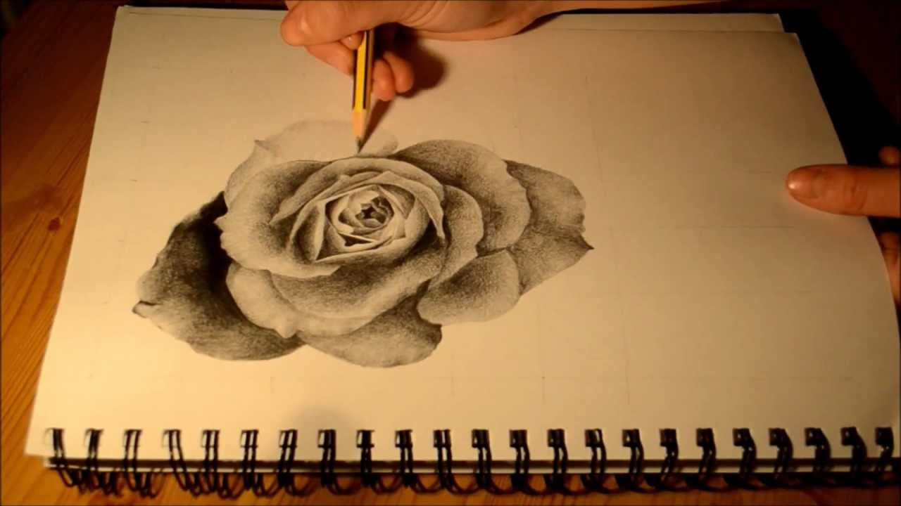 How to Draw a Realistic Rose - Speed Drawing Tutorial ...