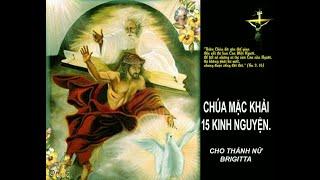 """15 KINH NGUYỆN CHÚA MẶC KHẢI CHO THÁNH NỮ BRIGITTA: """"Cha đã lãnh chịu trên thân xác 5480 roi đòn"""""""