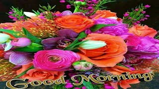 💮 GOOD MORNING 🏵️ video - WhatsApp Wishes