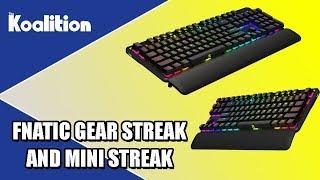 Fnatic Gear GEN 2 Streak and Mini Streak Unboxing & Impressions - The Koalition