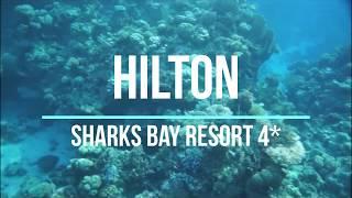 Hilton Sharks Bay Resort 4 Хилтон Шаркс Бей Резорт 4 Краткий обзор отеля