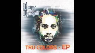 Stupid Money - Wayne Marshall (ft. Assassin) (Official Audio)