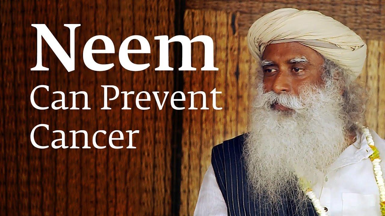 How Consuming Neem Can Prevent Cancer – Sadhguru